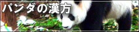 パンダの漢方